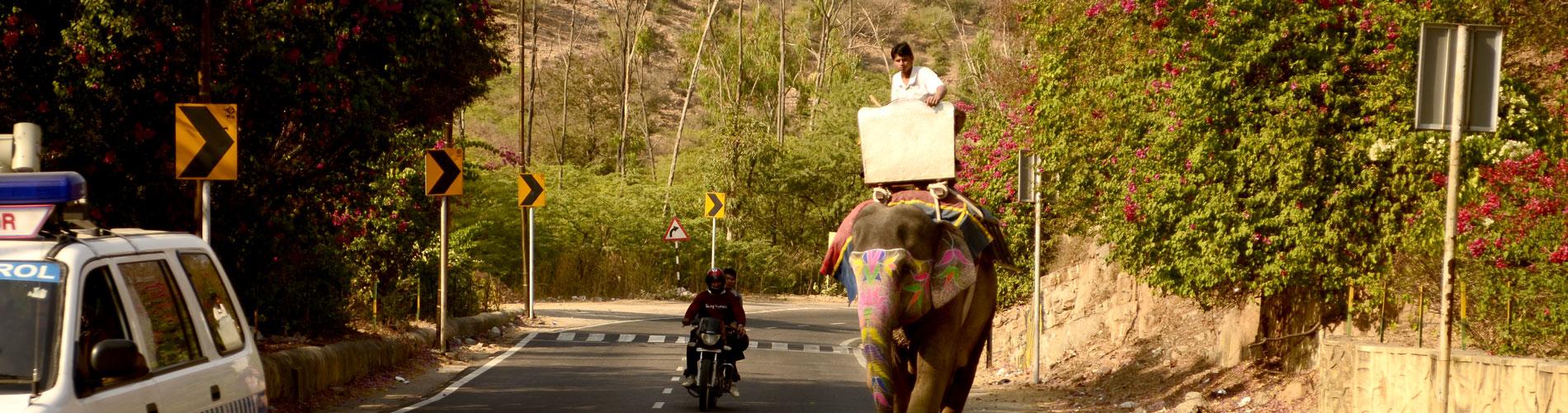 LUNA DE MIEL EN INDIA CON HOTELES OBEROI| Operadora Travel Shop